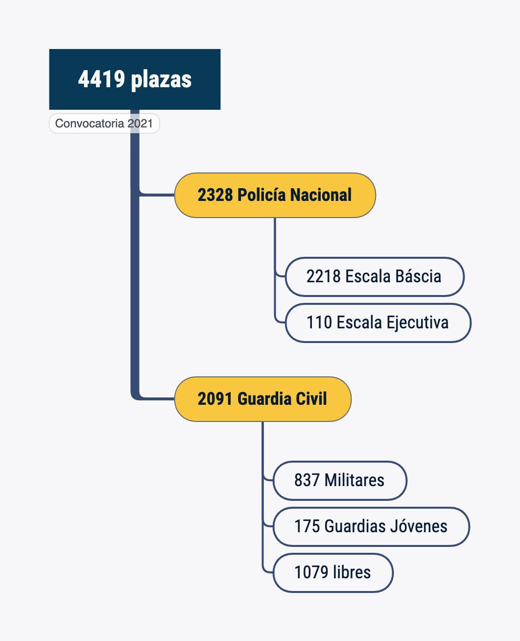 Convocatoria de plazas para Policía Nacional y Guardia Civil 2021. Fuerzas y Cuerpos de Seguridad del Estado